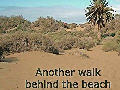 Another Walk Behind The Beach Upornia Com